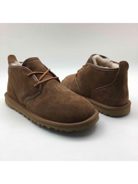 UGG Boots Man Maksim Chestnut